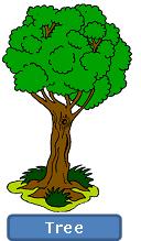 Los rboles the trees en ingl s for Las partes de un arbol en ingles